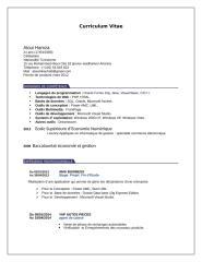 CV-ALOUI.doc
