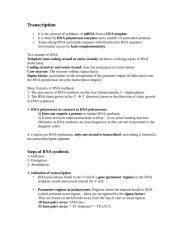 Transcription and translation.doc