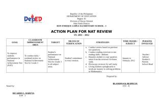 ACTION PLAN FOR NAT REVIEW.doc