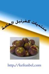فصل الزمان والمكان من كتب القران علم وبيان ل علي منصور كيالي (1).pdf