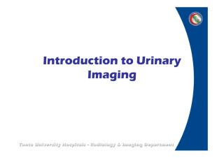 Introduction to Urinary Imaging.pdf